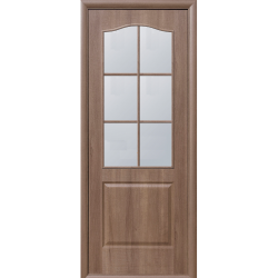 Door FORTIS B glass 600